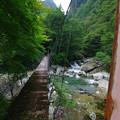 Photos: 橋の一歩