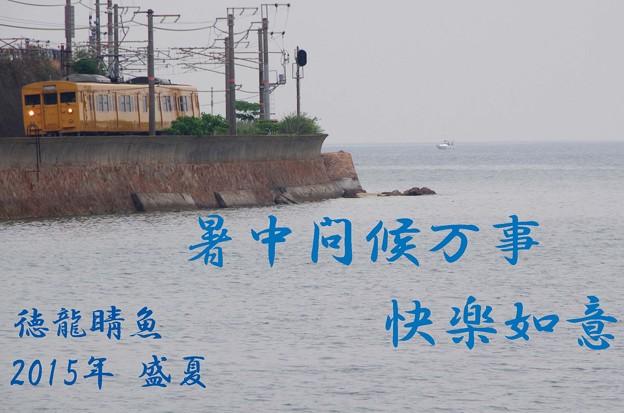 Photos: 2015暑中お見舞い_edited-1