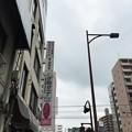 Photos: みーすけ2(品川区南大井)