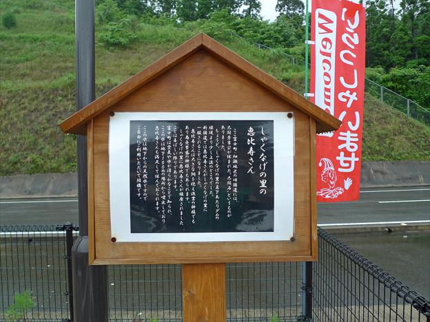 ダムの駅富士 しゃくなげの里(2)