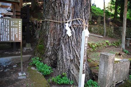 nagaokanoharikiri08