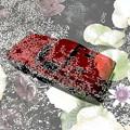 ~Red Lotus(赤い蓮)~