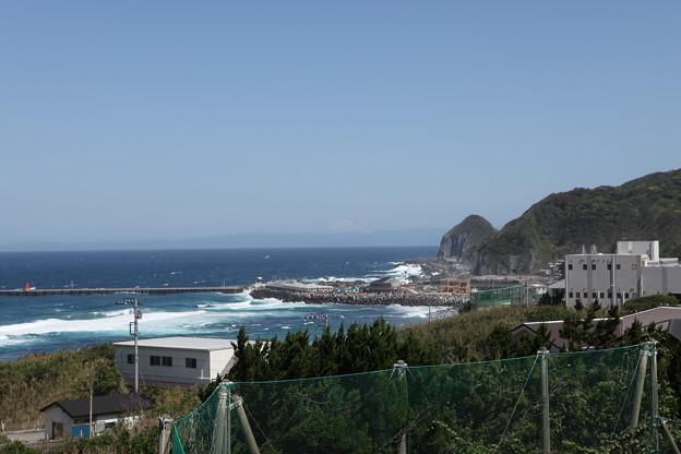 写真: IMG_6781神津島__天上山登山と島巡り