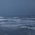 Photos: 日本海キラキラ☆ミ