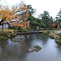 写真: 曲水と旭桜  兼六園
