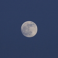写真: 満月の前日の月(2)