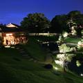 Photos: 玉泉院丸庭園(金沢城公園) 秋のライトアップ(2)