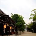 写真: いざなぎ神宮