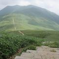Photos: 11.04 往復2時間で仙ノ倉山へs