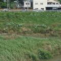 Photos: 大和路快速の車窓0034