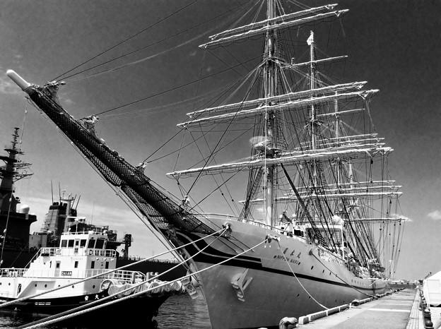 モノクロな世界 帆船二代目日本丸。。横浜開港祭 5月31日