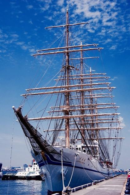 横浜の青空と綺麗な帆船二代目日本丸。。横浜開港祭 5月31日