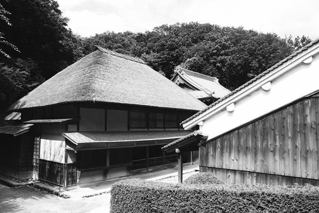 モノクロの世界。。綺麗な藁の屋根。。川崎市日本民家園6月28日
