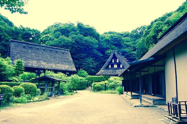 時が戻って行く風景。。日本民家。。川崎市日本民家園6月28日