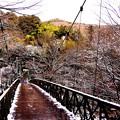 Photos: 旅館へ行く吊り橋雪残る景色・・20150102
