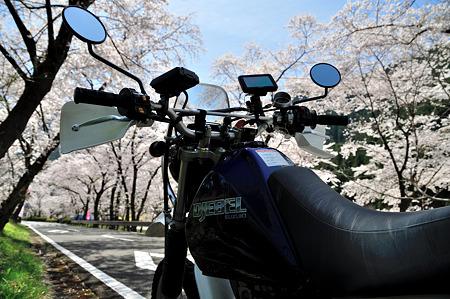 下北山村で桜ツーリング・1
