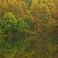 秋が始まるよ・・・御射鹿池
