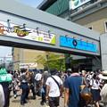 Photos: 多くの観客が訪れた甲子園