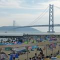 Photos: 明石海峡大橋を臨む海岸