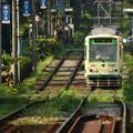 Photos: 荒川線