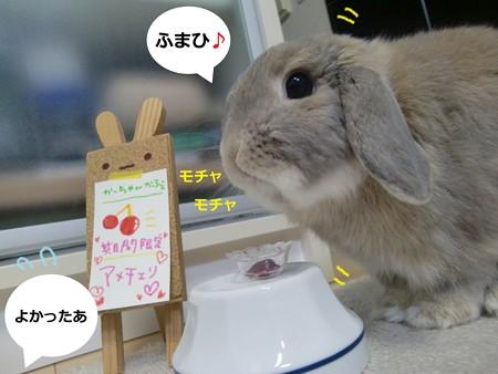 アメかふぇ3