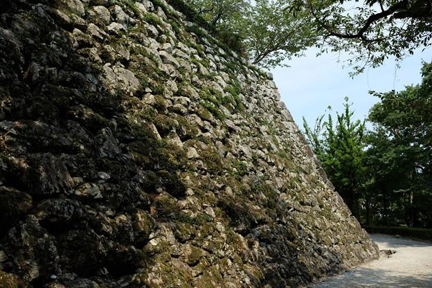 高知城の石垣