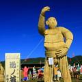 Photos: 逸ノ城かかし  里美かかし祭り